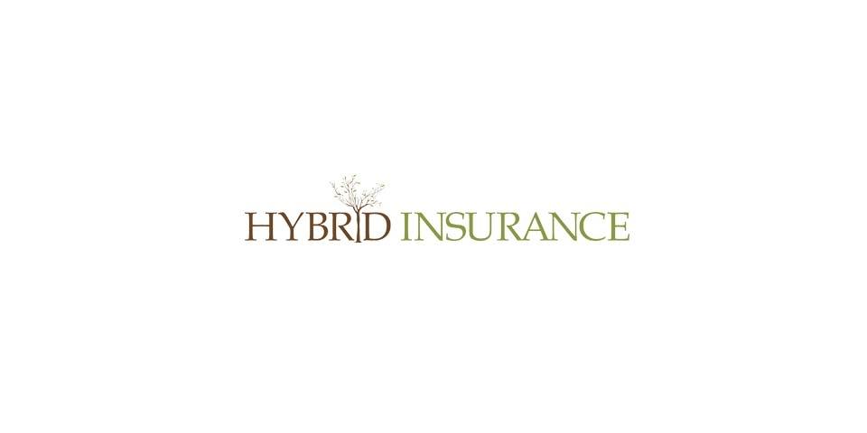 Hybrid Insurance